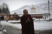 Himalayish monastic kirti cloister 2012 11 7